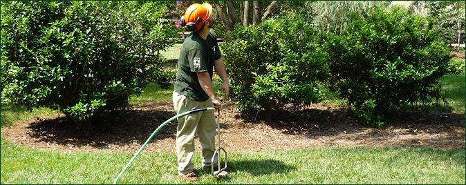 Deep Root Fertilization, Deep Root Soil Amendment, Charlotte, NC