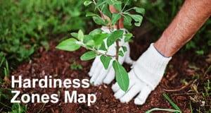 Tree Hardiness Zones Map