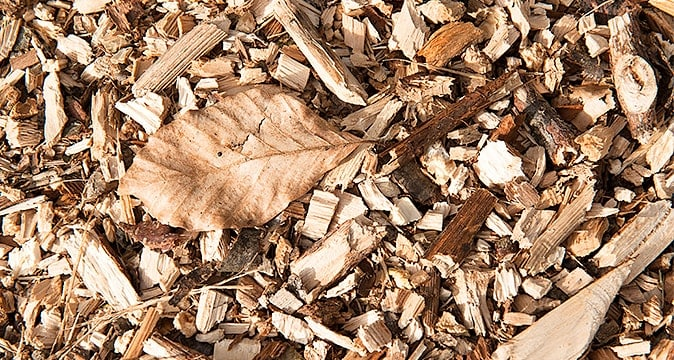 Vertical Mulching, Charlotte Lawn Maintenance & Landscaping Services
