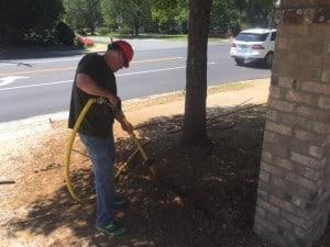 root excavation 6
