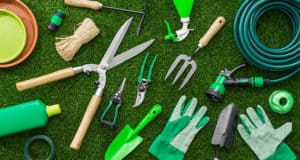 Make your lawn look picture perfect- Here's How?